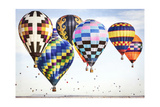 Hot Air Balloons Cluster 3 Posters by Lillis Werder