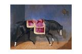 Untitled Prints by Bernard De Claviere