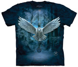 Anne Stokes- Awake Your Magic T-Shirts
