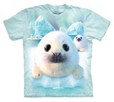 Youth: David Penfound- Sealpups T-shirt