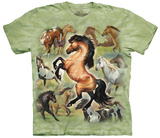 Cynthia Fisher- Horse Collage Shirts