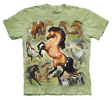 Youth: Cynthia Fisher- Horse Collage Shirts
