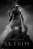 Skyrim- Dragonborn Póster