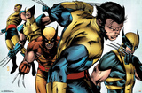 Wolverine- Costume Evolution Photo