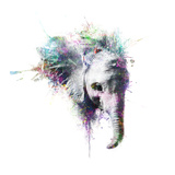 Elephant Metal Print by  VeeBee