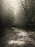 Back Country Road Prints by Nicholas Bell