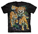 Youth: Tami Alba- Bengal Tiger Collage Shirt