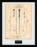 Harry Potter - Harrys Wand Wydruk kolekcjonerski