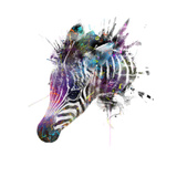 Zebra Metal Print by  VeeBee