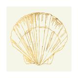 Coastal Breeze Shell Sketches V Posters af Anne Tavoletti