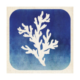 Watermark Coral Posters by  Studio Mousseau
