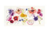 Rainbow Ruffles Poster by Shirley Novak