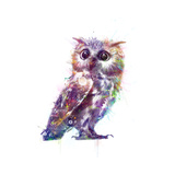 Owl Metal Print by  VeeBee