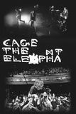 Cage The Elephant- 2 Live Pics Reprodukcje