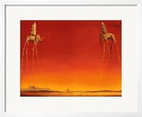 The Elephants, c.1948 Prints by Salvador Dalí