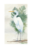 Standing Egret II Crop Prints by Avery Tillmon