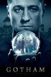 Gotham- Mad City Plakat