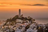 Coit Tower and Golden Fog Flow, San Francisco, Cityscape, Urban View Fotografisk tryk af Vincent James