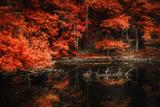 Still Breathing Fotografie-Druck von Philippe Sainte-Laudy