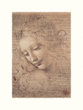 Testa Di Faniciulla Detta Giclée-tryk af Leonardo Da Vinci