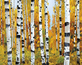 Vail Giclee Print by Mark Chandon