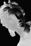 X-ray - Louvre III Giclee Print by Tony Koukos