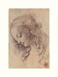 Testa Di Donna Di Profilo Giclee Print by Leonardo Da Vinci
