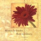 Kindness - Gerber Kunstdruck von Stephanie Marrott