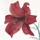 Lily II Giclee Print by Emma Forrester