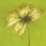 Emma Forrester - Floral Burst VI - Giclee Baskı