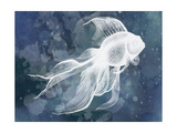 Indigo Fish II Affiche par Grace Popp