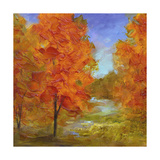 Burst of Autumn Color Posters by Sheila Finch