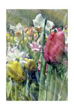 Spring at Giverny III Prints by Pam Ilosky