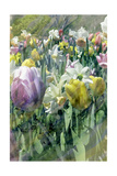 Spring at Giverny II Posters by Pam Ilosky