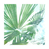 Emerald Palms II Print by Pam Ilosky