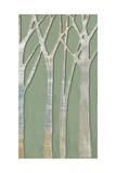 Birchline Triptych III Prints by Jennifer Goldberger