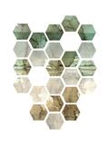 Hexocollage I Prints by Pam Ilosky