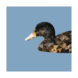 Abstract Polygonal Vector Illustration. Portrait of Duck Photographic Print by Jan Fidler