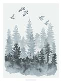 Sierra Vista I Giclee Print by Naomi McCavitt