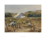 Grazing Sheep I Limited Edition by Ethan Harper
