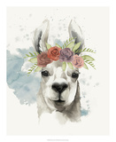 Llama Flora I Plakat af Grace Popp