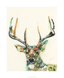Hi Fi Wildlife II Limited Edition by Jennifer Goldberger