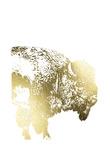 Gold Foil Buffalo Print by Naomi McCavitt