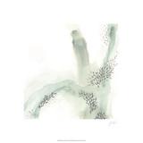 Wave Form IV Særudgave af June Erica Vess