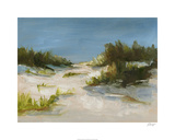 Summer Dunes I Limited Edition by Ethan Harper