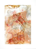 Coral Lace I Limited Edition by Jennifer Goldberger
