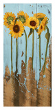 Sunflowers on Wood II Art by Sandra Iafrate