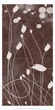 Botany Expressions VIII Art by Irena Orlov