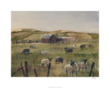 Grazing Sheep II Limited Edition by Ethan Harper