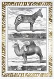 Gilded Safari II Plakater af Denis Diderot